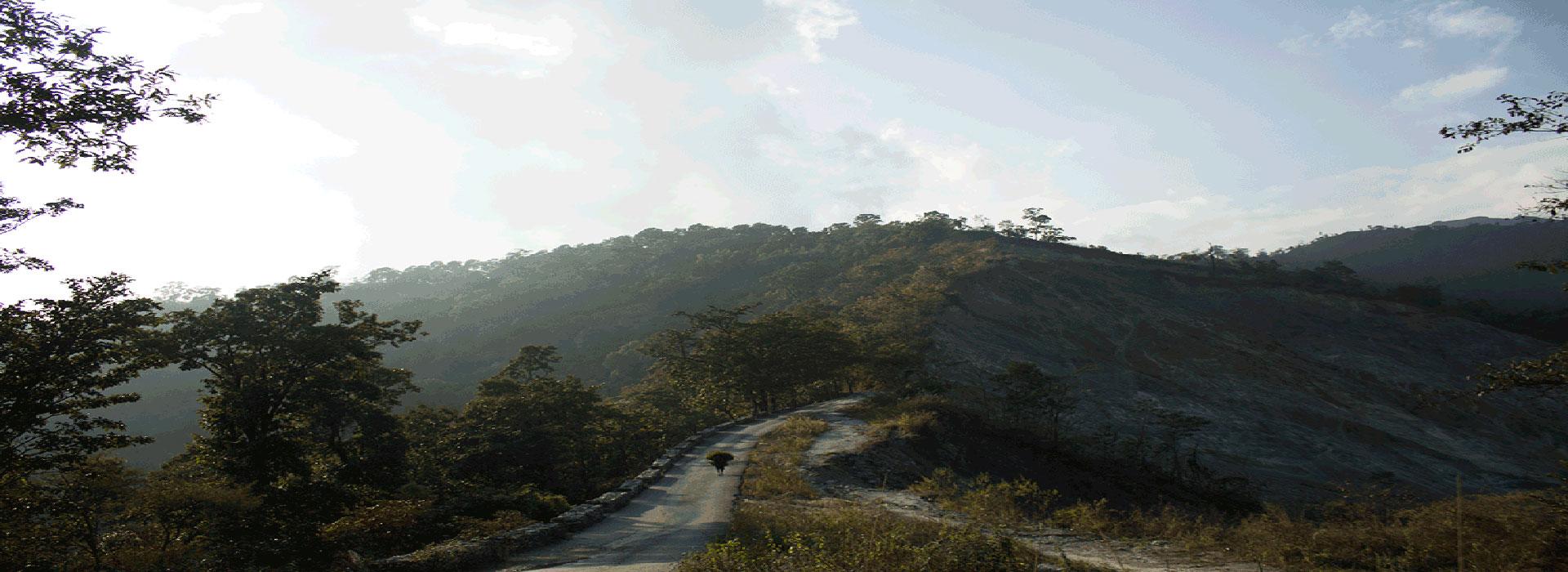 The road to Latpanchar Darjeeling