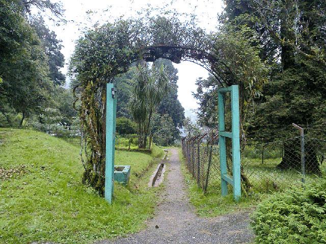Llyod Botanical Garden