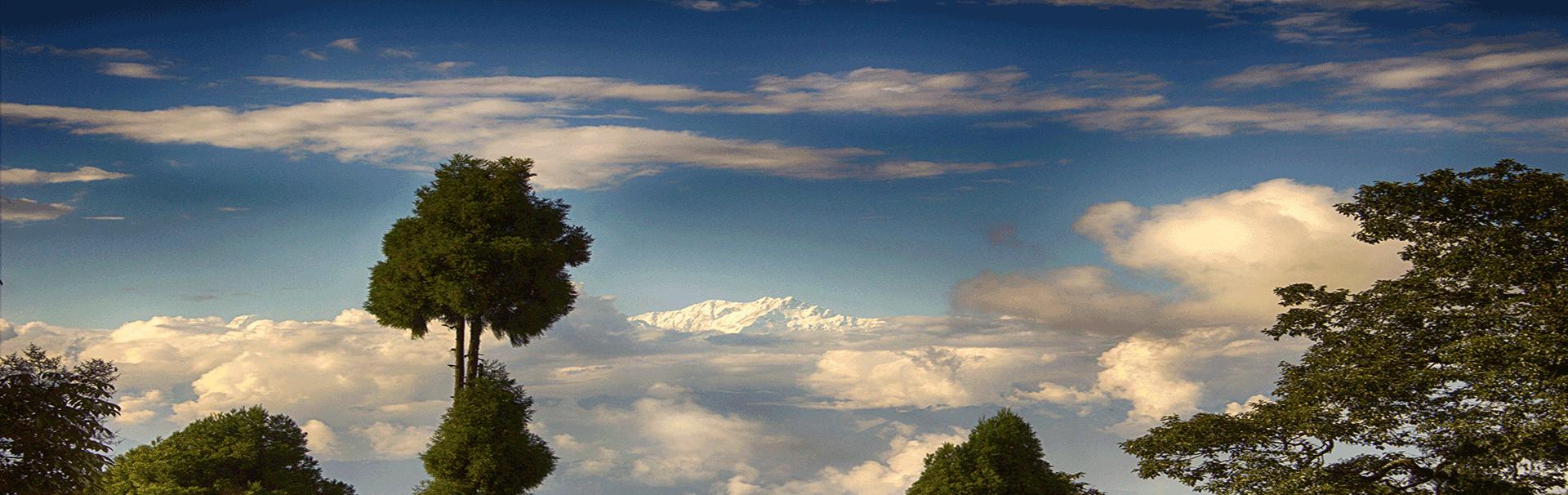 Darjeeling Hills North Bengal