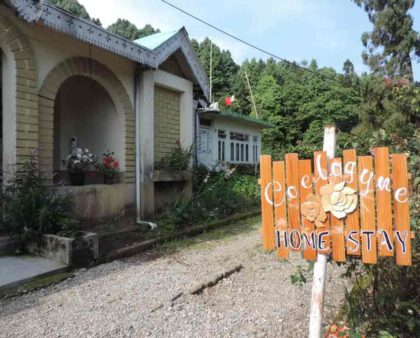 Kurseong Coelogyne HomeStay