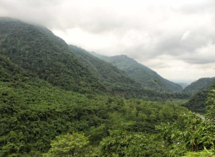 The beauty of North Bengal