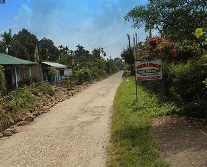 Way to Yonzonla Homestay