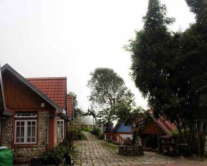 Darjeeling Blossom Eco Tourism Chota Mangwa